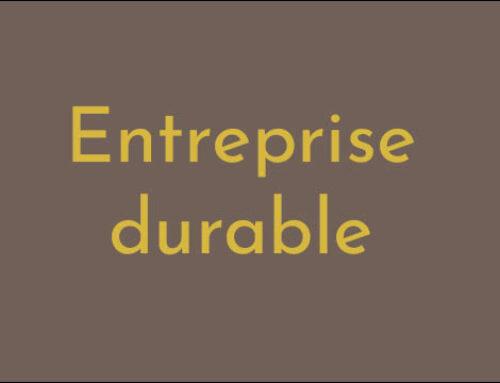 Entreprise durable